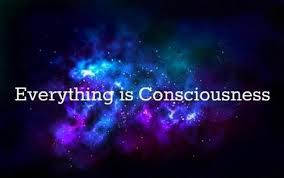 EVERYTHING IS CONSCIOUSNESS