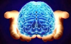 our amazing brain