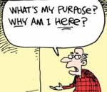 whats-my-purpose